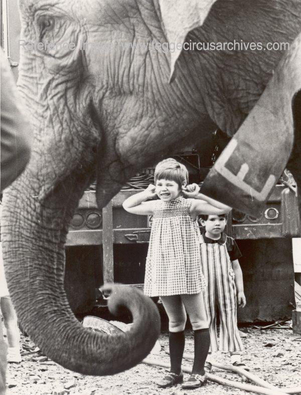 Elephant & Kids