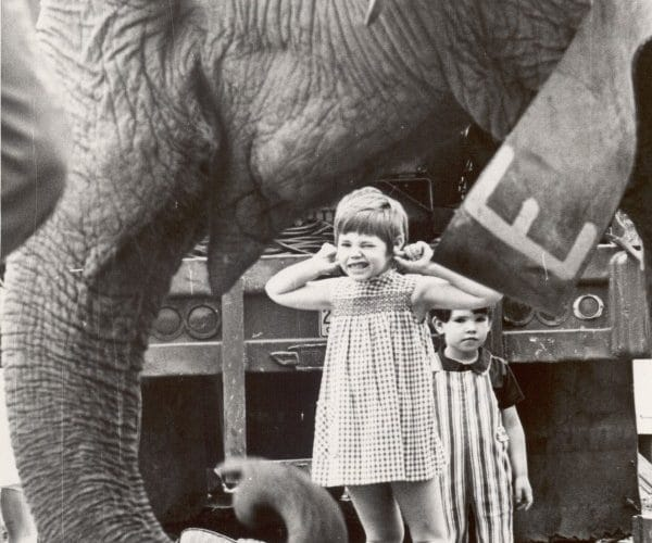 Elephant and Kids, black-and-white photograph, collection Tegge Circus Archives.